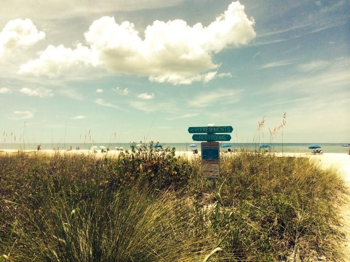beach and sea oat grass