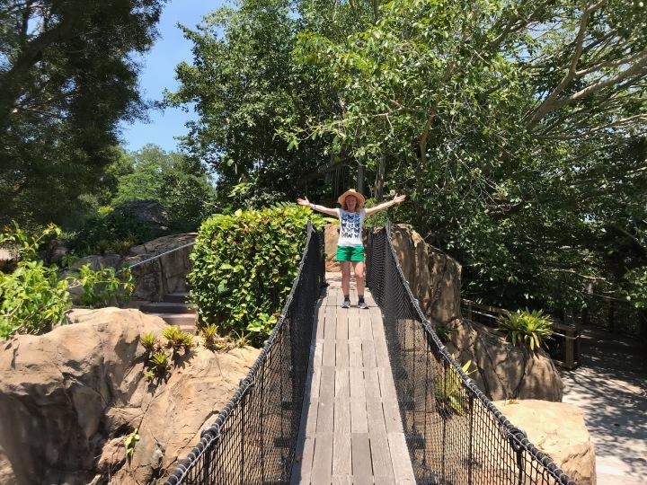 suspending bridge